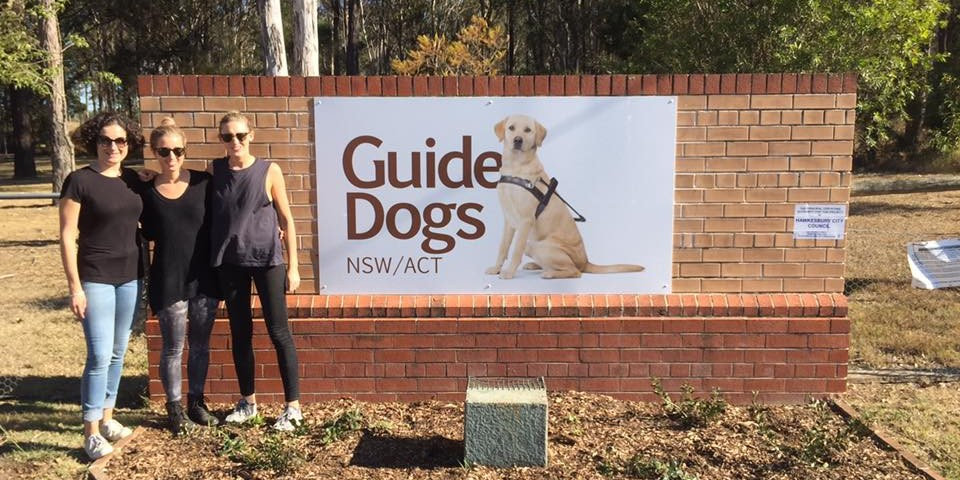 guide dogs1